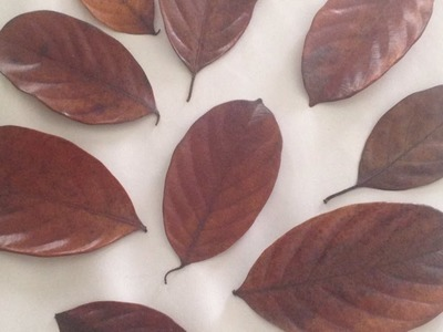 How To Preserve Leaves With Glycerin - DIY Crafts Tutorial - Guidecentral