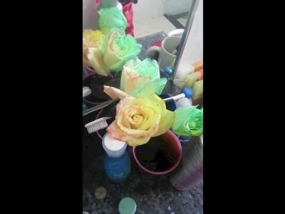 Rainbow Roses DIY