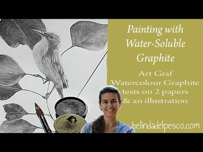 ArtGraf Water Soluble Graphite review - painting on paper