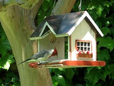Vrubel bird homes & feeders - Casitas y comederos para pájaros Vrubel