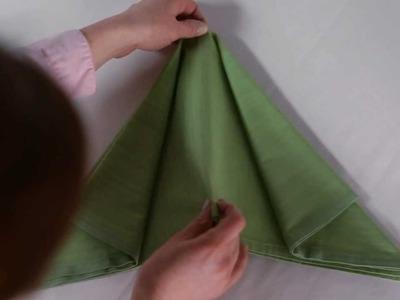 Fold a Napkin into an Airplane