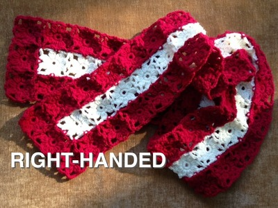 Watch How To Crochet Easy Poinsettia Scarf (4 RIGHTIES)
