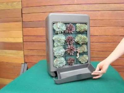 DIY Vertical Garden Mini Kit - Vertiscape