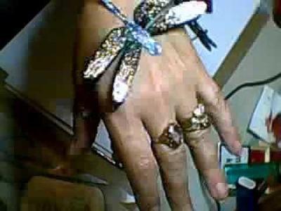 Handmade Vellum Butterflies and Dragonflies - Jennings644