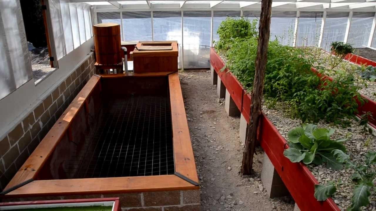 Homestead Aquaponics Greenhouse