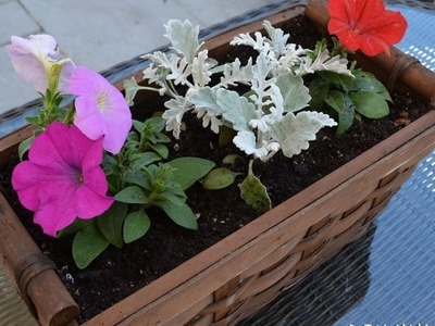 How To Create A Simple Wicker Basket Planter - DIY Home Tutorial - Guidecentral