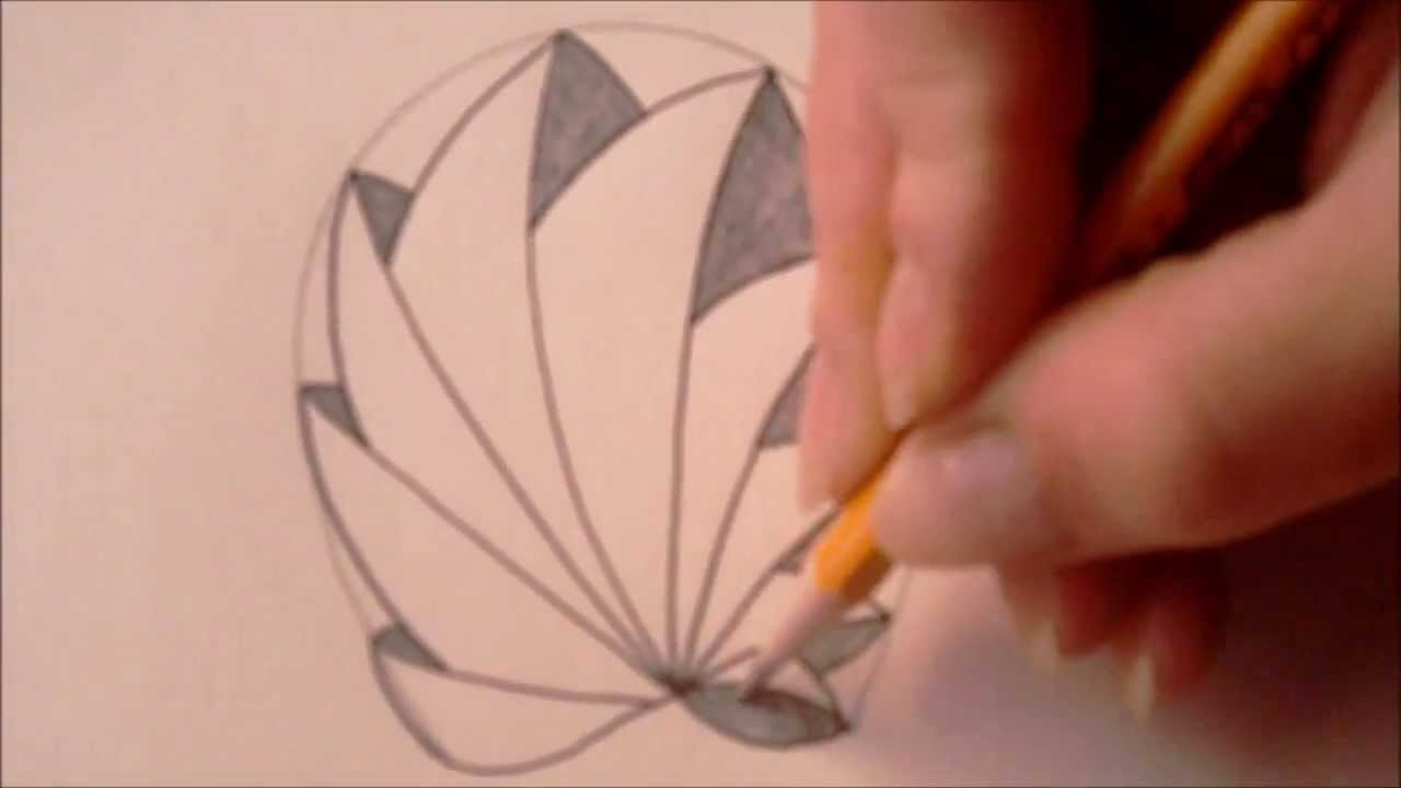 How to draw tanglepattern Phicops