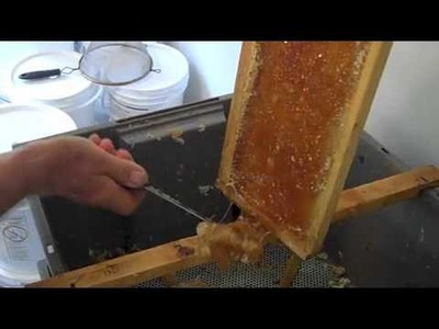 Extracting Honey on the Cheap