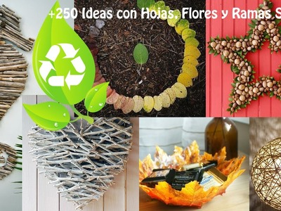 Reciclar Hojas, Flores y Ramas Secas +300 Ideas.  Recycling leaves, flowers and dry branches.