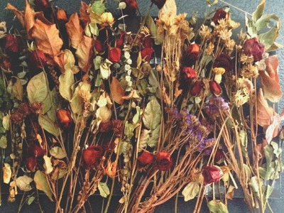 DIY: Dried Flower Collage