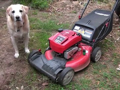 LAWNMOWER DIY 101: How to replace the Spark Plug in my Lawnmower