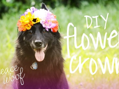 DIY Doggie Flower Crown