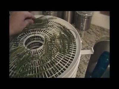 DIY Herb Drying (Chives) Tutorial