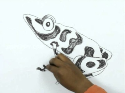 How to Draw a Poisonous Frog