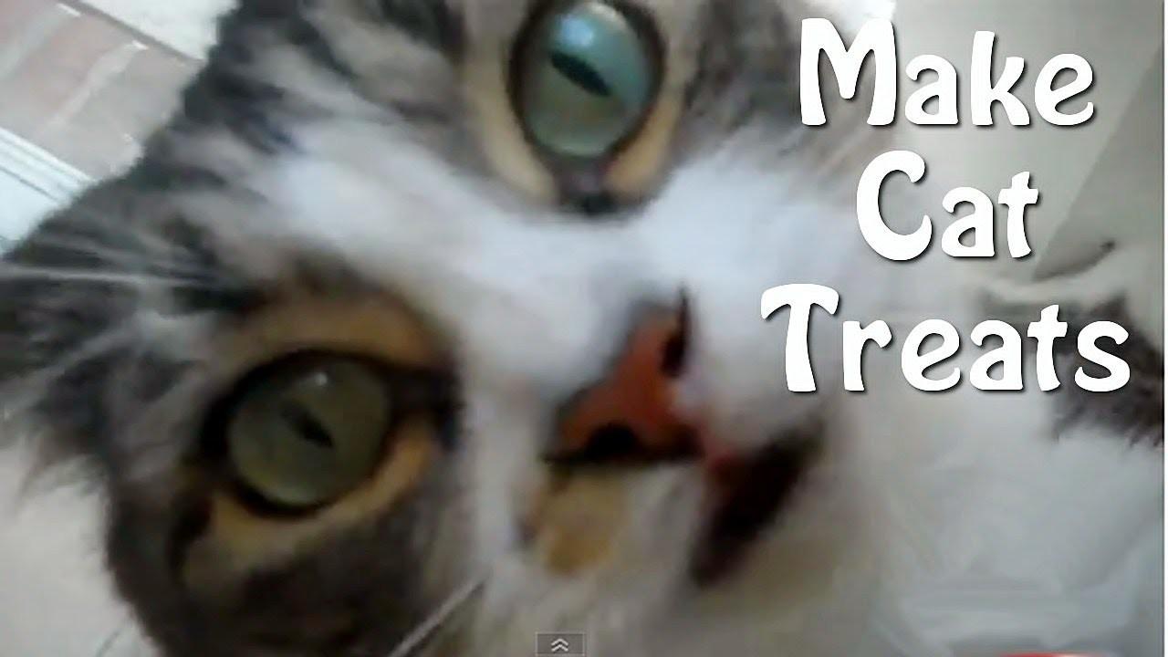 How To Make Cat Treats - Easy Homemade Recipe!