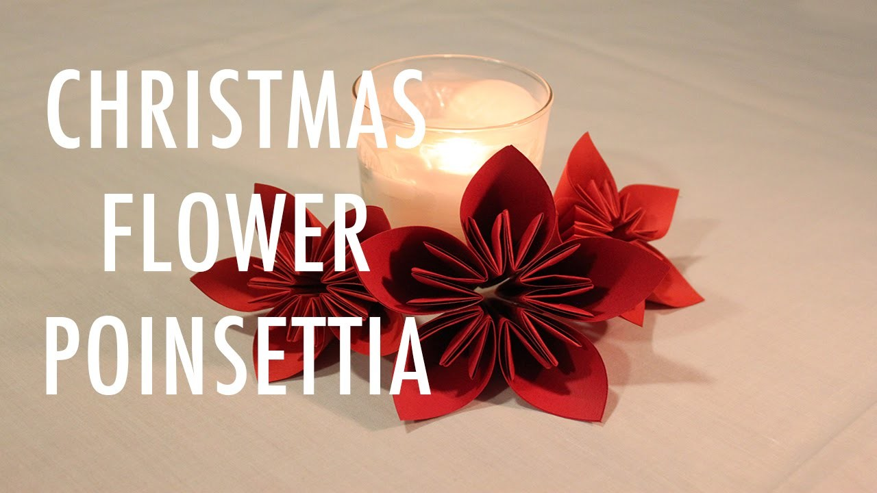 DIY CHRISTMAS.HOLIDAY FLOWER: POINSETTIA