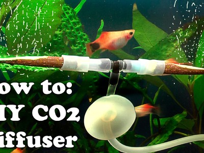 How to DIY cheap CO2 DIFFUSER using Rowen twigs