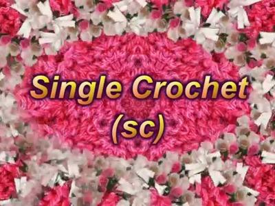 Learn to Crochet Lesson 3 - Single Crochet (sc)