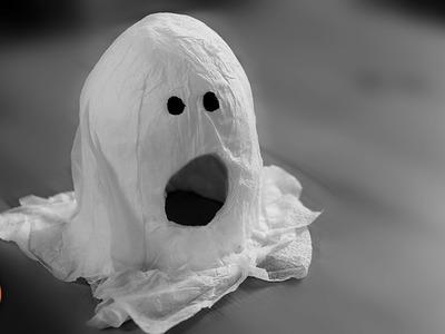 DIY Ghost Hideaway | Hamsters, Mice & Gerbils
