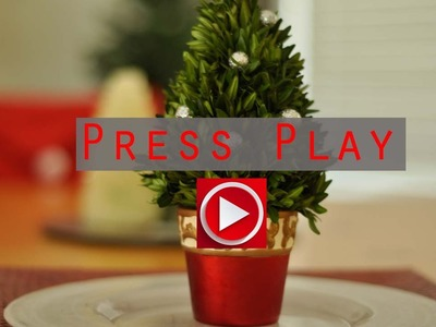 DIY Fresh Mini Christmas Tree Tutorial