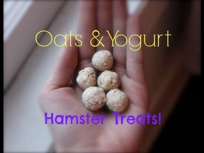 {DIY} How to Make Oats & Yogurt Hamster Treats!