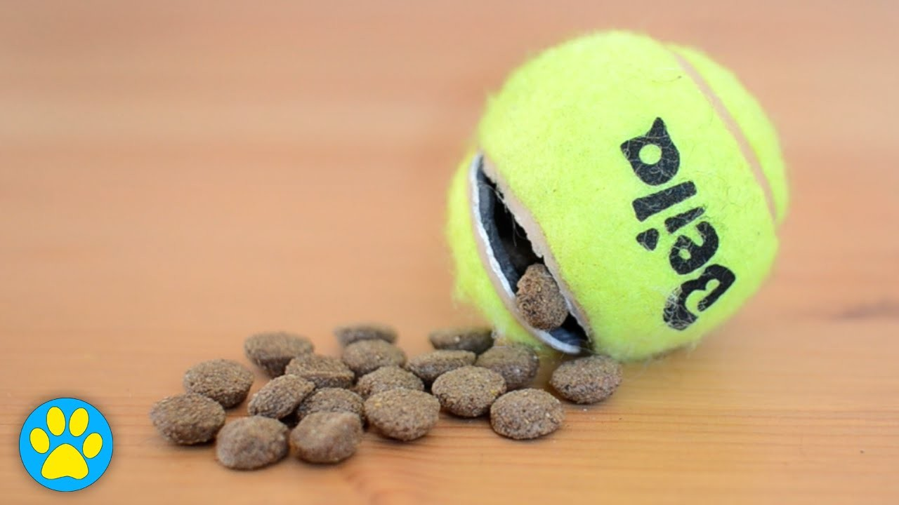 DIY Tennis Ball Treat Toy For Dogs
