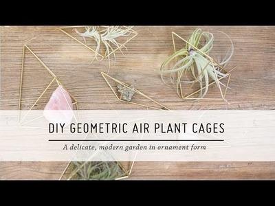 DIY Geometric Air Plant Cages | Home Decor Tutorial | Mr Kate