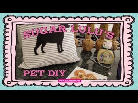 Sugar Lulu's Pet DIY