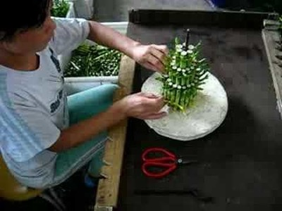 How a lucky bamboo tower be made