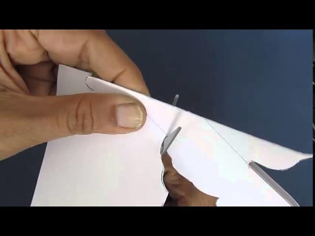 BIRD OF PEACE - HINDI - AMAZING 3D POPUP ANTI-WAR PAPER SCULPTOR
