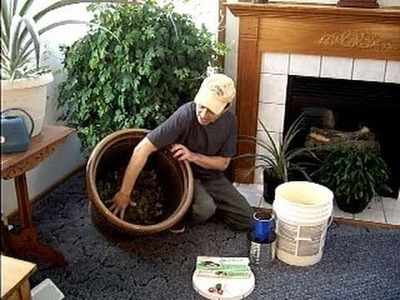 EASY Indoor composting anytime!