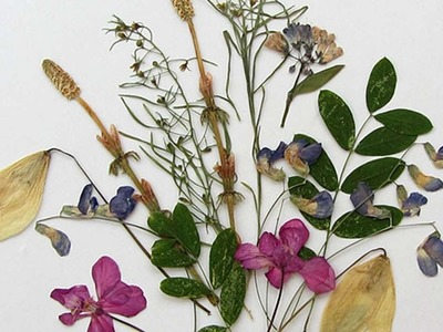 How To Create Pretty Dried Flowers - DIY Crafts Tutorial - Guidecentral