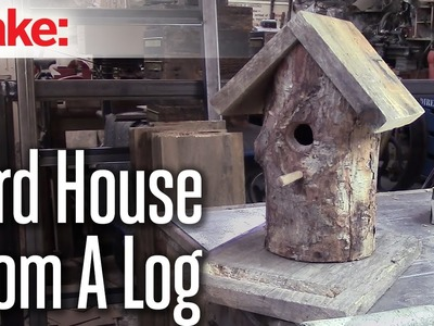 DiResta: Log Bird House