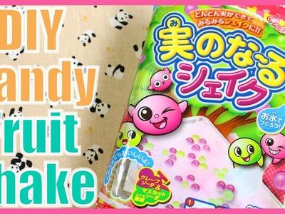 DIY CANDY! Foamy Fruit Shake