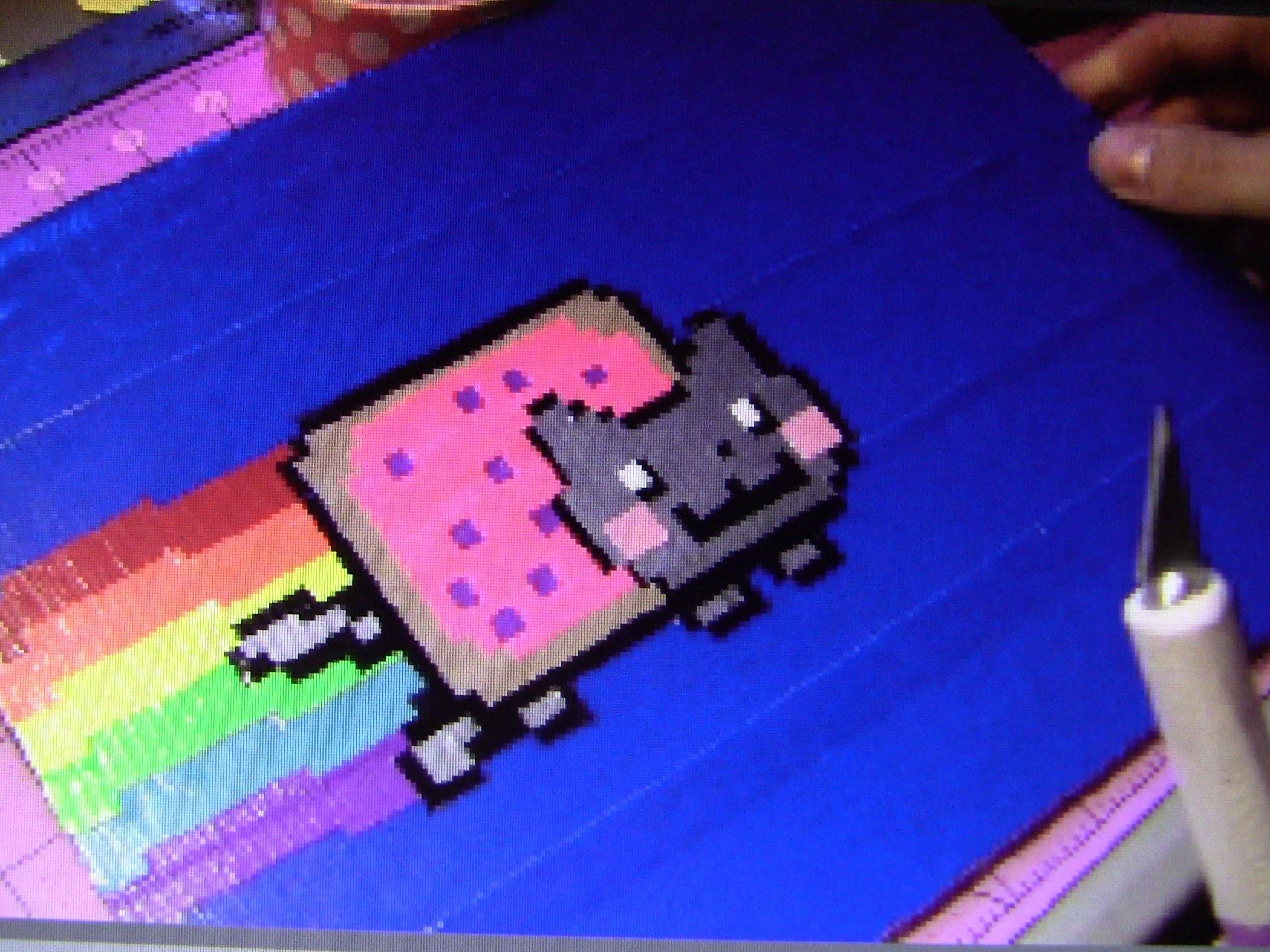 Nyan Cat Time Lapse!