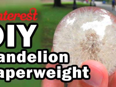 DIY Dandelion Paperweight - Man Vs Pin - Pinterest Test #62