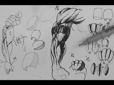 Pen and Ink Drawing Tutorials | How to draw muscular superhero arms