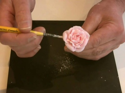 Piped Roses: The Ultimate Edible Flower Video Demonstration