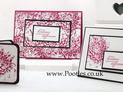 Stampin Up UK Stamp Kit of the Month MAY