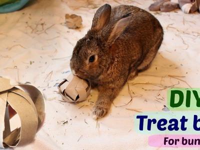 DIY treat ball for bunnies