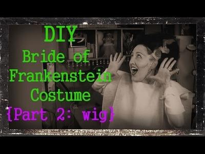 DIY Bride of Frankenstein Wig