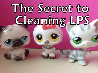 DIY - The Secret to Cleaning LPS!
