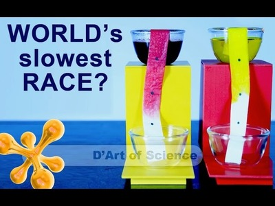 How to make the worlds slowest race - using capillary action  - DIY - dartofscience