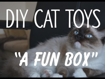 "DIY Cat Toys. ""A Fun Box"". Make your cat happy,"