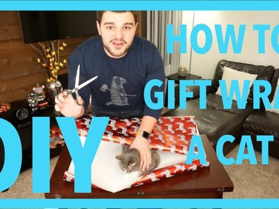 VINNY DUKE DIY: HOW TO GIFT WRAP A CAT