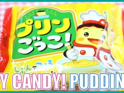 DIY CANDY! Custard Pudding