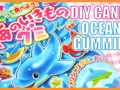 DIY CANDY! Ocean Gummies!