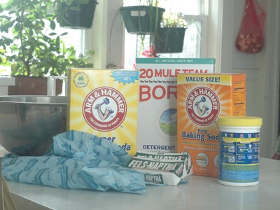Starting Brassicas and DIY Laundry Soap - The Wisconsin Vegetable Gardener