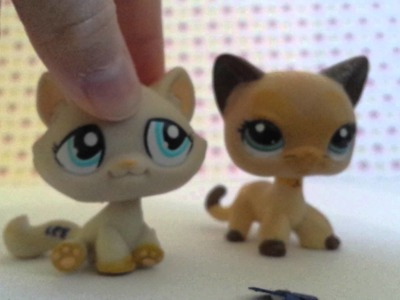 ♥D.I.Y How To Make A LPS Flower ♥