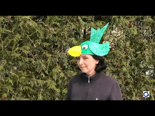DIY Bird Hat